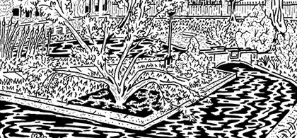 Botany Pond maze
